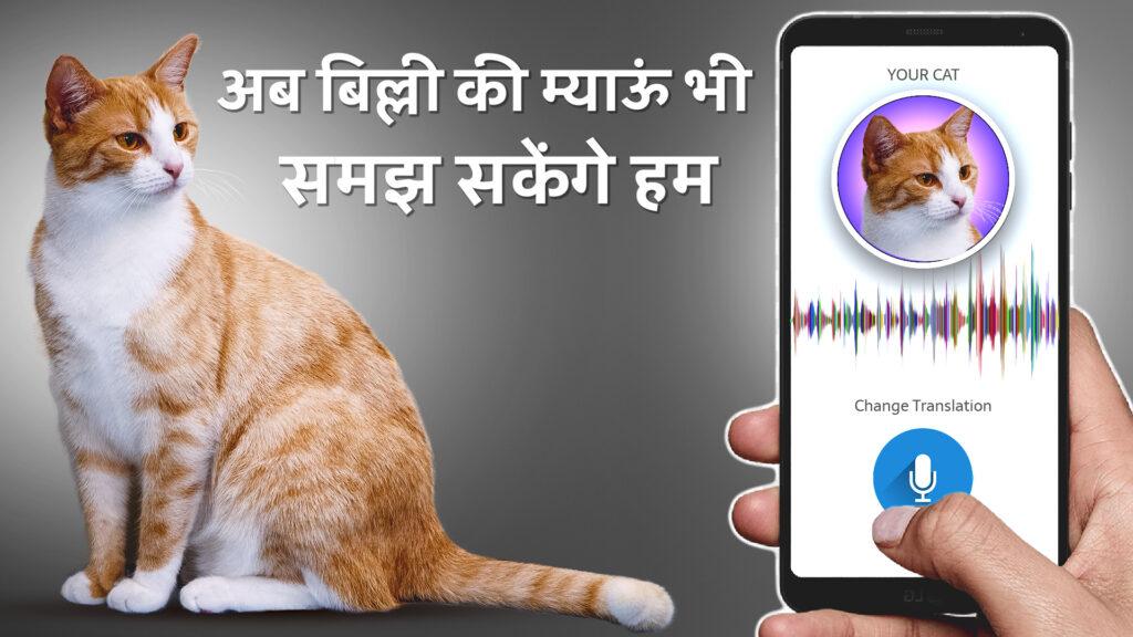 Cat Translator App